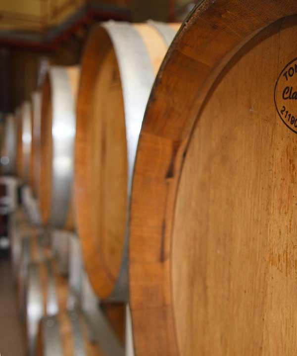 Ceretti Wines, vini piemontesi del Monferrato 7